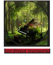 Bezoek Diederick zijn  Intuïtieve Piano Concerten